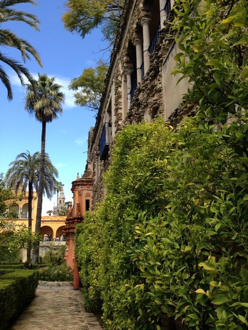 Alcázar_de_Sevilla-Seville-Palais-Jardin-Spain-1
