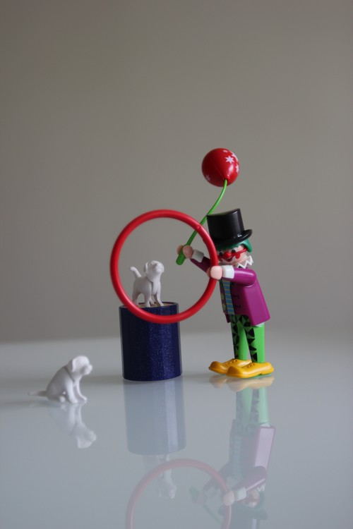 Circus- Playmobil-Spectacle