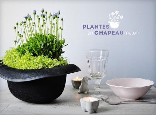 DIY-Centre_de_table-Fleurs-Chapeau_Melon-plantes