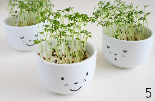 cute-cress-cups-with-a-face-diy-Fete_des_meres-Mothersday