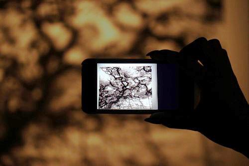 Maison_Et_Objet-Nature_made-Francois_Bernard-design-tendance-Amana-Arart-Communication_visuelle-CGI_Art-art_numerique