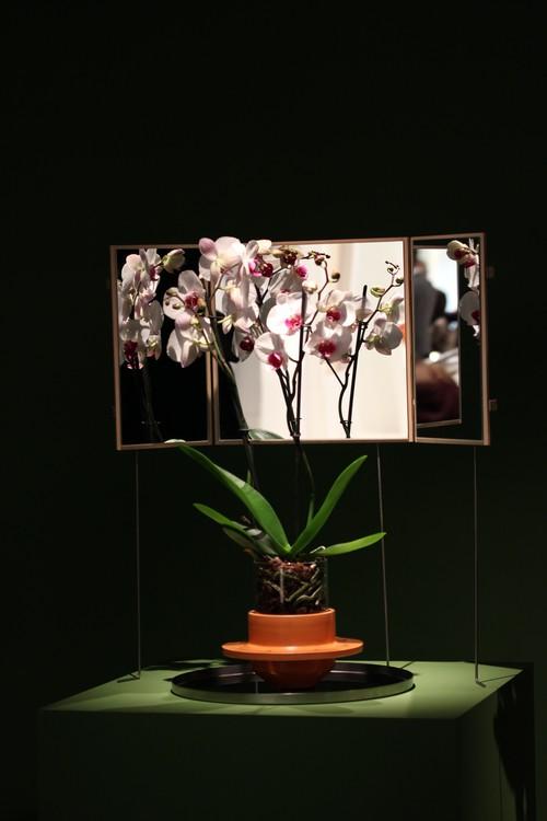 Maison_Et_Objet-Nature_made-Francois_Bernard-design-tendance-Studio_dossofiorito-Livia_Rossi-Gianluca_Giabardo-Phytophiler_Project-3