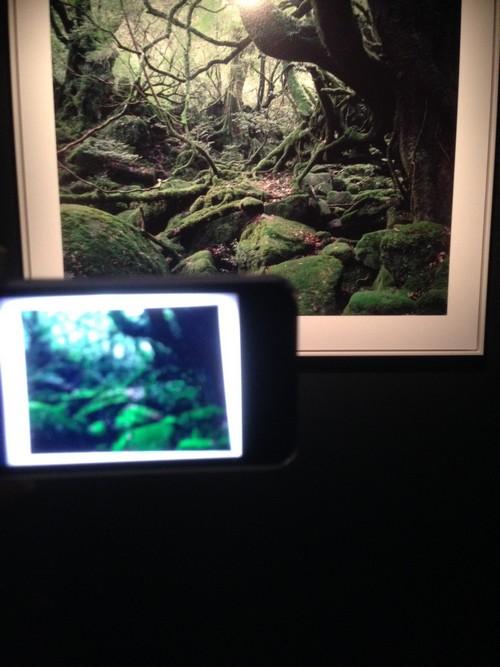 Maison_Et_Objet-Nature_made-Francois_Bernard-design-tendance