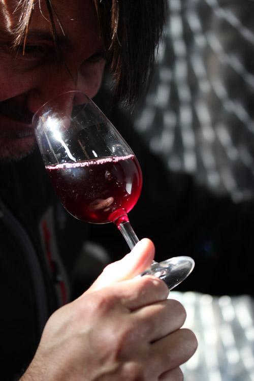 Sel_d_Aiz-Bodegas-Cantabrie-Spain-Espagne-wine-vin-Blogtrip-vignes-degustation-Asier