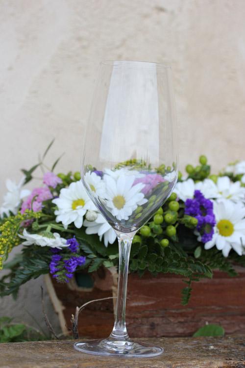 Sel_d_Aiz-Bodegas-Cantabrie-Spain-Espagne-wine-vin-Blogtrip-vignes-degustation-verres-4