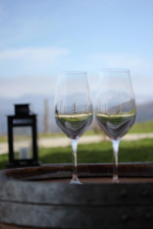 Sel_d_Aiz-Bodegas-Cantabrie-Spain-Espagne-wine-vin-Blogtrip-vignes-degustation-verres