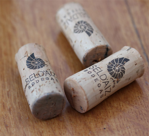 Sel_d_Aiz-Bodegas-Cantabrie-Spain-Espagne-wine-vin-Blogtrip-vignes-bouchons