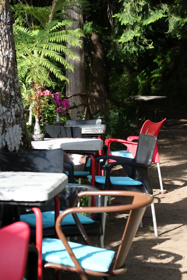 Balcoes-Levadas-Nature-Madere-Madeira-Portugal-Blogtrip-travels-cafe