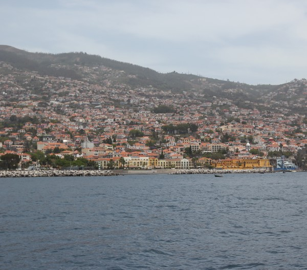 Madere-Madeira-Dauphins-Funchal-Portugal-Blogtrip-travels-citadelle-2