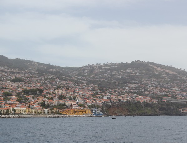 Madere-Madeira-Dauphins-Funchal-Portugal-Blogtrip-travels-citadelle