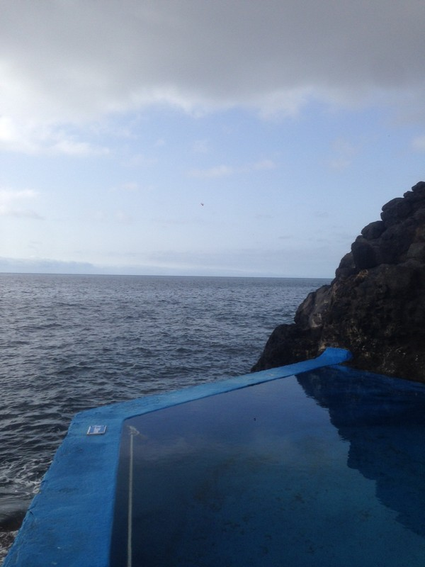 Belmond_Reids_Palace-Hotel-Madeira-Luxe-Portugal-Madere-Blogtrip-Travel--pool-22