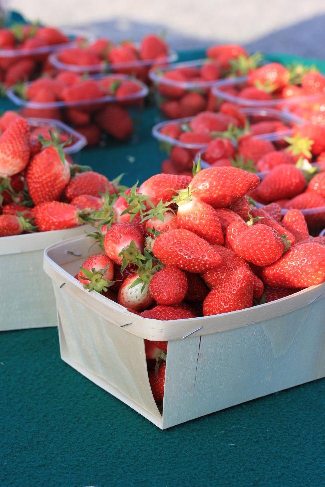 Plougonvelin-marches-fraises-tourisme-travel-blogtrip-France-Bretagne-Finistere